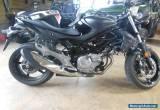 2013 Suzuki GLADIUS SFV650 for Sale