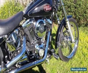 Harley Davidson FXSTC 2008 for Sale