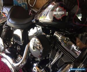 2002 Harley-Davidson Dyna for Sale
