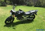 Honda CBF250 for Sale