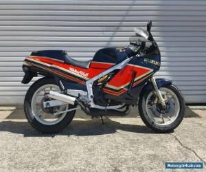 Suzuki RG400 for Sale