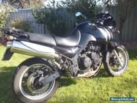 Clean, black Triumph Tiger 955i, 2001, ~74000km, Staintune muffler:$4000