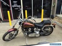 1984 Harley Davidson softail