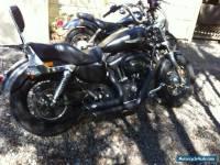 2013 Harley Davidson XL1200B Custom