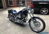 1994 Harley-Davidson Softail for Sale