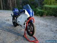 RGV 250 Track Bike