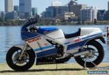 SUZUKI RG500 for Sale