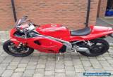 Triumph Daytona 955  for Sale