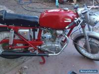 ducati  bevel mac 1  250 rare bird