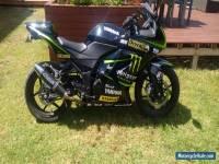 Kawasaki Ninja 250R Road Bike Motorcycle Yamaha Monster Energy Lams Honda Ducati