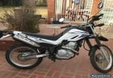 2008 Yamaha XT for Sale