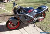 1988 Honda CBR for Sale