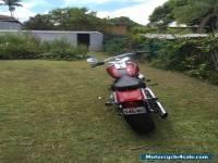 Harley Davidson FXST Softtail 2006