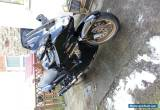 Honda Blackbird CBR1100XX for Sale