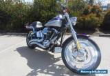 2001 Harley-Davidson Softail Deuce 1450 (FXSTD) for Sale