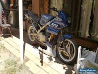 Kawasaki ex500 gpz500 lams project gumtree