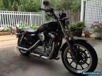2011 XL883 Sportster Harley Davidson *NO RESERVE*