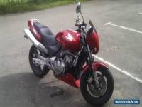 1998 HONDA CB600 HORNET RED Motorcycle *No Reserve Starting bid 99p*