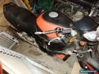 Honda Blackbird CBR1100XX Motorcycle 1998 Carbs Model Street Fighter