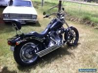 Harley Davidson 103 Softail Standard 2013