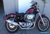 HARLEY DAVIDSON 883 Sportster for Sale