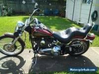Harley Davidson Softail Custom 2007. Must Sell.