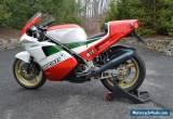1988 Ducati Superbike for Sale