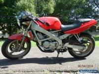 1991 Honda Spada (VT250) In Excellent Original Condition. LAMS Learner Legal.