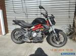 BENELLI BN302 2015 MODEL LAMS APPROVED LOW KMS LIKE NEW CHEAP NINJA 300 CBR  for Sale
