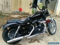 Harley Davidson 2012 sportster iron
