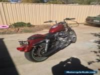 Harley Davidson Sportster 1999 1200