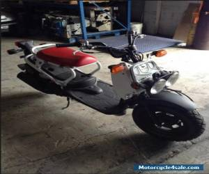 2015 Honda RUCKUS for Sale